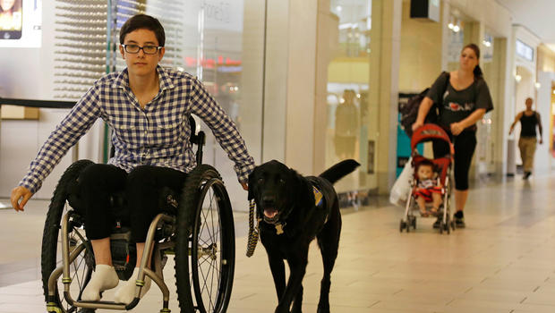 dog owner in a wheelchair